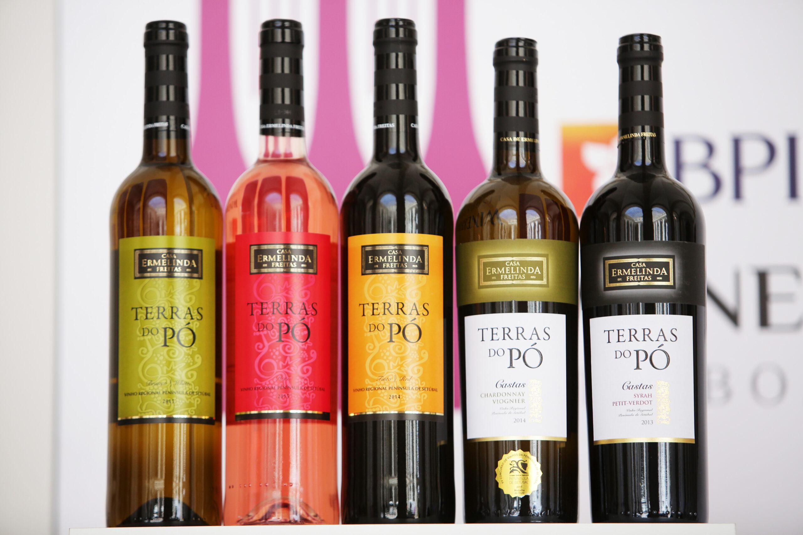 Garrafas de vinho Casa da Ermelinda Freitas Terras do Pó de 2013 a 2105 em exposição no evento gastronómico. garrafa de vinho. rosé. branco. tinto. verde.
