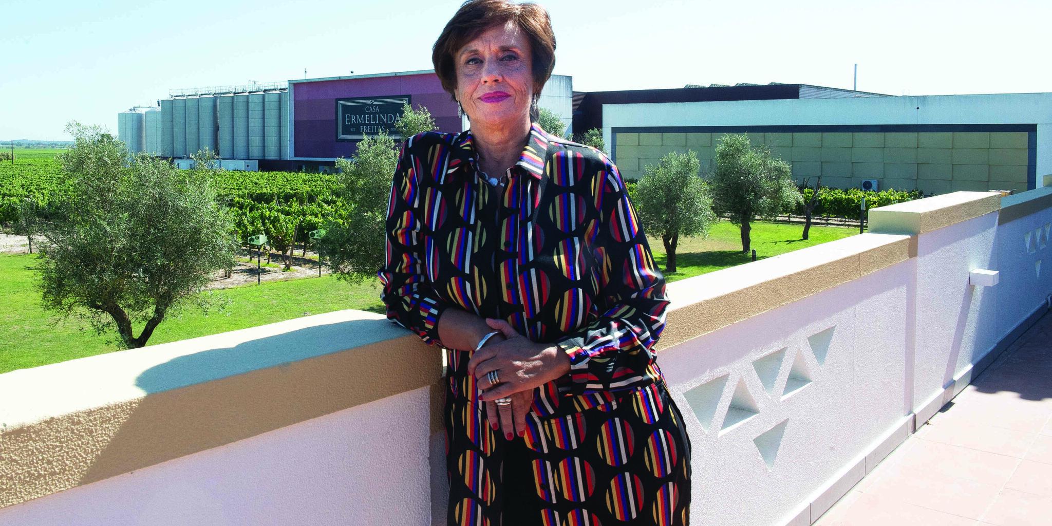 Casa Ermelinda Freitas: tradição e competitividade